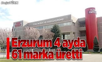 Erzurum 4 ayda 61 marka üretti