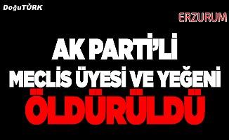 AK Partili meclis üyesi ve yeğeni silahla öldürüldü