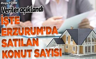 Erzurum'da 5 ayda 2 bin 603 konut satıldı