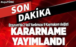 Kararname yayımlandı; Erzurum'a bir Vali Yardımcısı 9 Kaymakam atandı