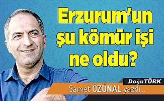 Erzurum'un şu kömür işi ne oldu?