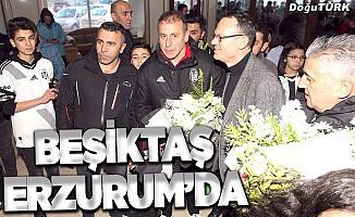 Beşiktaş kafilesi Erzurum'da çiçeklerle karşılandı