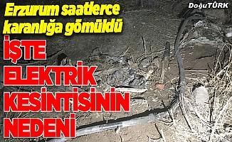 Erzurum'daki elektrik kesintisinin sebebi belli oldu