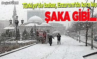 Erzurum yoğun kar yağışıyla beyaza büründü