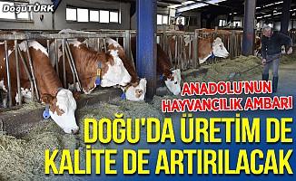 """""""Anadolu'nun hayvancılık ambarı"""" Doğu'da üretim de kalite de artırılacak"""