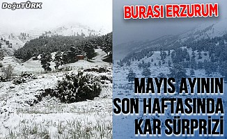 Erzurum'da mayıs ayının son haftasında kar sürprizi