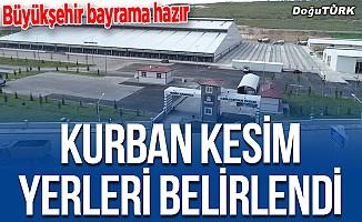Erzurum'da kurbanlıklar 'randevu' ile kesilecek