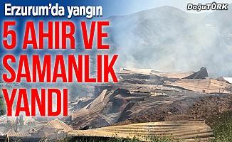 Erzurum'da 5 ahır, birer samanlık ve tahıl ambarı yandı