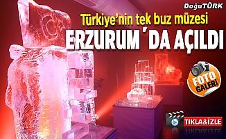 Erzurum'da Türkiye'nin tek buz müzesi açıldı