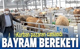 Kurban bereketi; Hayvan pazarları canlandı