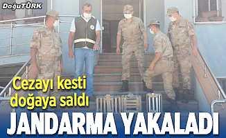 Jandarma yakaladı, cezayı kesti
