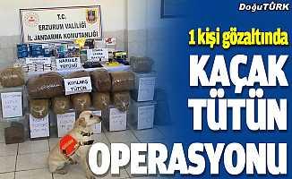 Erzurum'da kaçak tütün operasyonunda bir kişi yakalandı