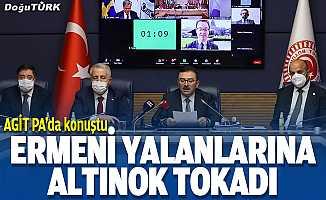 Altınok: Ermeni iddialarını AGİT PA'da yanıtladık