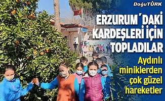 Aydın'dan Erzurum'a gönderdiler