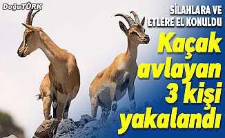 Erzurum'da kaçak av yapan 3 kişi yakalandı