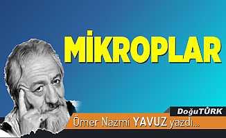 MİKROPLAR