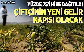 Erzurum çiftçisinin yeni gelir kapısı olacak