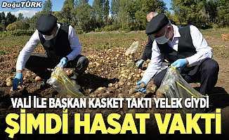 Vali ve Başkan kasket taktı, hasat yaptı