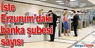 ERZURUM'DA 70 BANKA ŞUBESİ BULUNUYOR