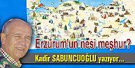 Erzurum'un nesi meşhur?