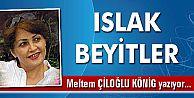 ISLAK BEYİTLER