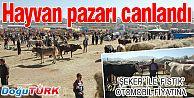 'ŞEKER' İLE 'FISTIK' OTOMOBİL FİYATINA