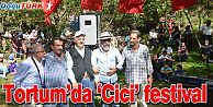 TORTUM'DA 'CİCİ' FESTİVAL