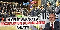 YÜCELİK, ANKARA'DA ERZURUM'UN SORUNLARINI ANLATTI