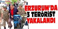 ERZURUM'DA TERÖR OPERASYONU; 3 KİŞİ YAKALANDI