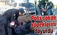 POLİS SOKAK KÖPEKLERİNİ DOYURDU