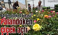 Palandöken'de 60 bin çiçek ve 5 bin gül toprakla buluşuyor