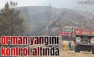Erzurum'daki orman yangını kontrol altına alındı