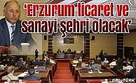 """""""Erzurum ticaret ve sanayi şehri olacak"""""""