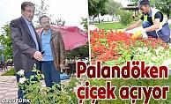 Palandöken Belediyesi ilçeyi çiçeklerle donatıyor