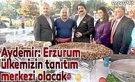 Aydemir: Erzurum ülkemizin tanıtım merkezi olacak