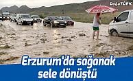 Erzurum'da sağanak sele dönüştü