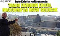 Tarihi Erzurum evleri, Hacıcuma'da hayat bulucak