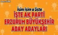 bİşte AK Parti Erzurum Büyükşehir aday adayları/b
