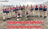 Jandarma'dan Şehitler anısına hatıra ormanı