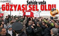 Şehit polis Kaltar son yolculuğuna uğurlandı