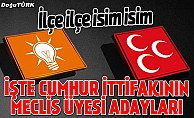 İşte Erzurum'da Ak Parti ve MHP'nin meclis üyesi adayları