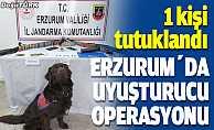 Erzurum'daki uyuşturucu operasyonunda bir kişi tutuklandı