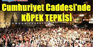 CUMHURİYET CADDESİ'NDE KÖPEK TEPKİSİ