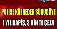 POLİSE KÜFREDEN KAMYON SÜRÜCÜSÜNE 1 YIL HAPİS, 3 BİN TL ADLİ PARA CEZASI